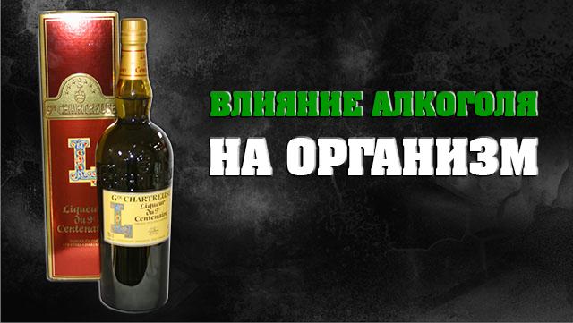 Как алкоголь влияет на организм человека?